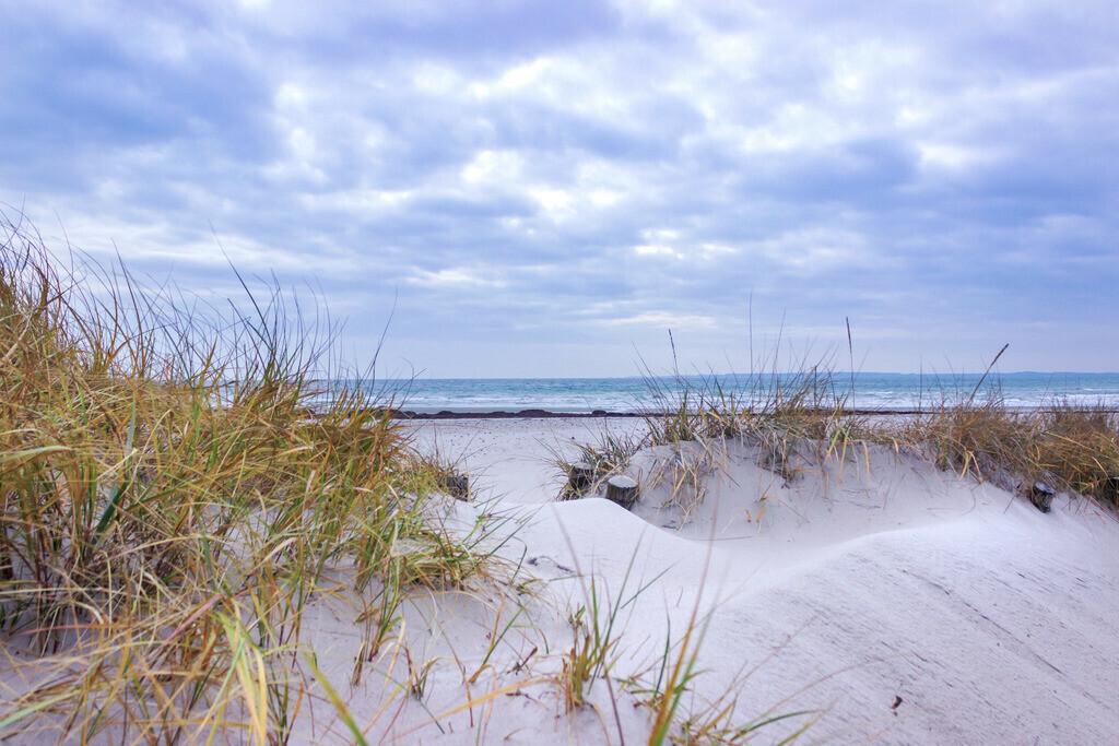 Strand in Damp | Strand in Damp im Herbst