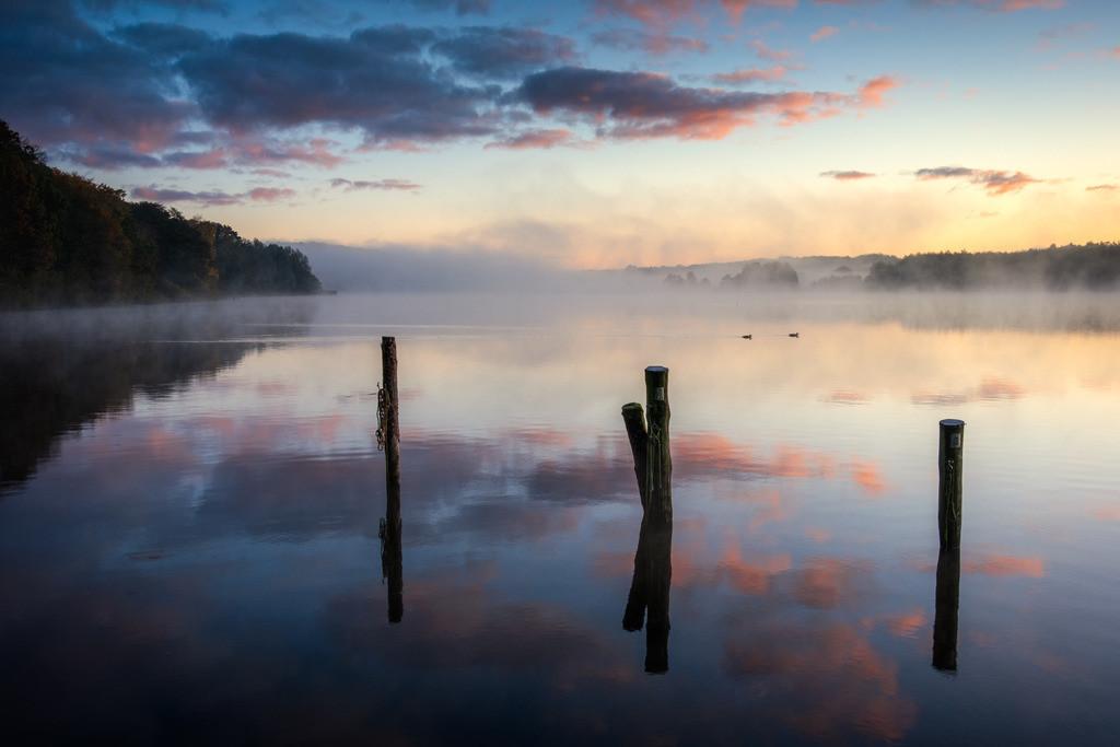 The Poles | Neblige Morgenstimmung am Bossee