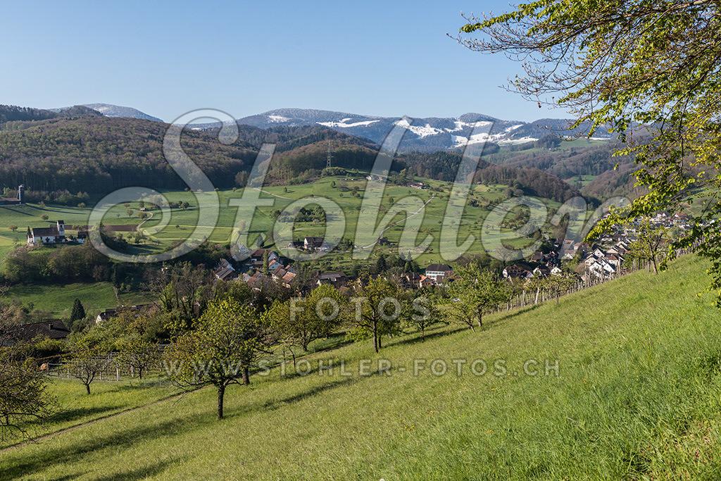 Dorfansicht, Ziefen (BL) | Dorfansicht mit verschneitem Wasserfallen-Passwanggebiet (29. April 2017), Ziefen im Kanton Baselland.