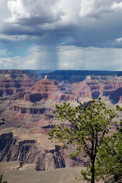 Arizona Grand Canyon National Park | USA, Arizona, 07.08.2012, Arizona Grand Canyon National Park, © 2012 Christoph Hermann, Bild-Kunst Urheber 707707