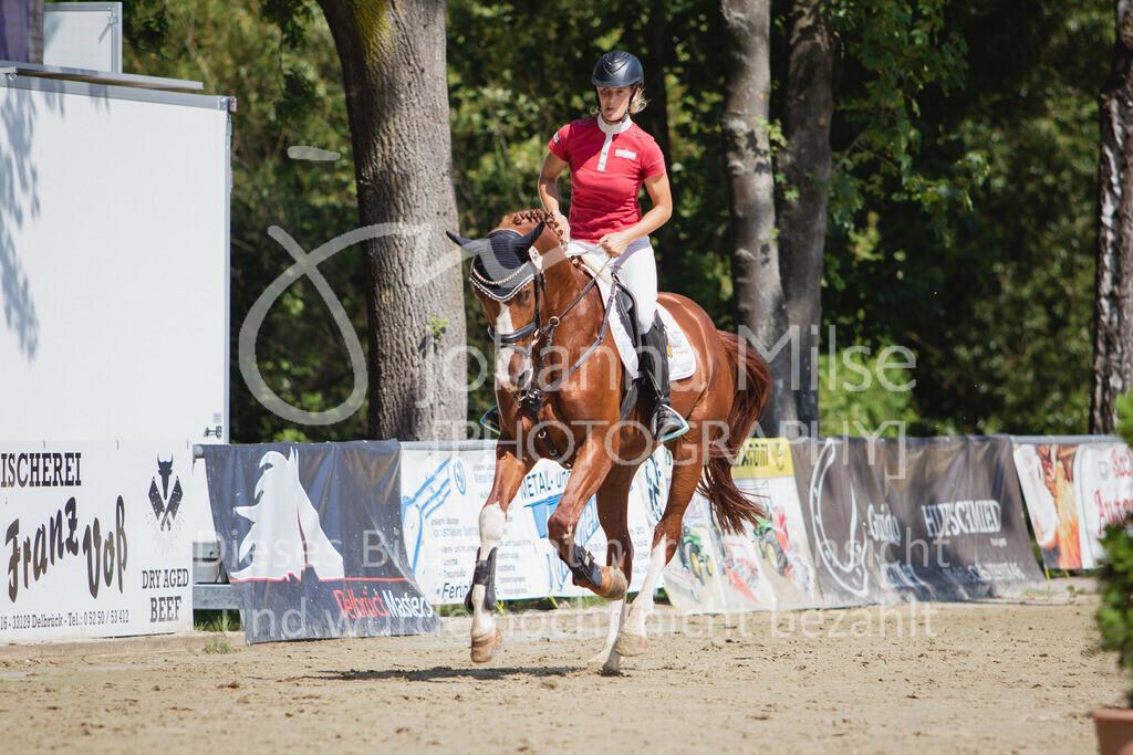 200819_Delbrück_Sprpf-A_2_1-250   Delbrück Masters 2020 Springpferdeprüfung Kl. A** 4-6jährige Pferde