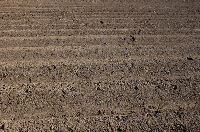 Furchen im Acker | Tief umgegrabene Furchen im Acker