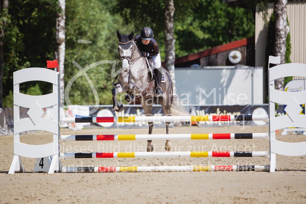 200819_Delbrück_Sprpf-A_2_1-240 | Delbrück Masters 2020 Springpferdeprüfung Kl. A** 4-6jährige Pferde