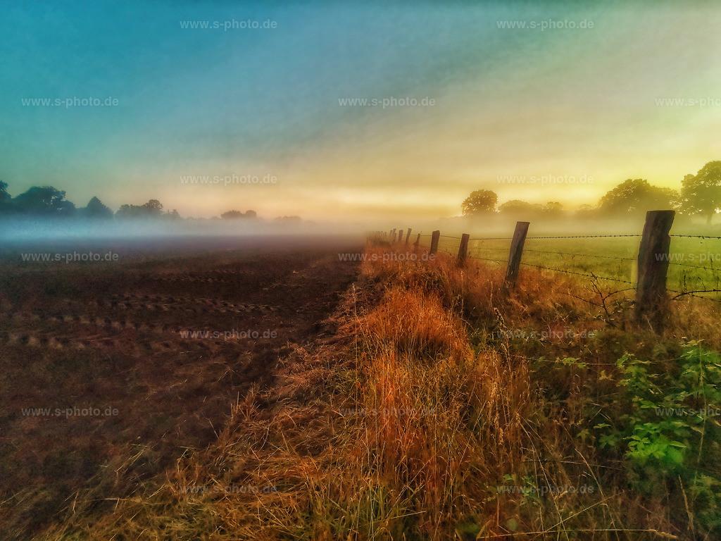 Morgenstimmung | .. am Moor