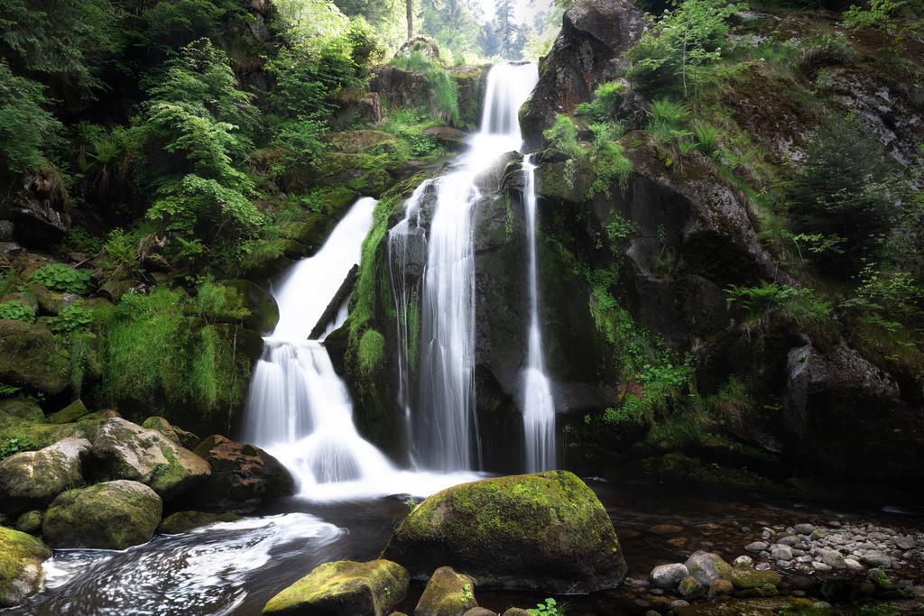 Trieberger Wasserfall 1