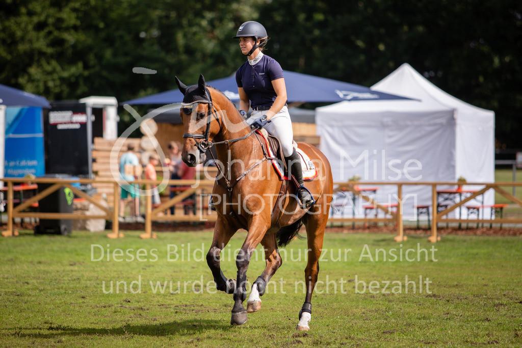 190719_LC_SprPf-A-042   Lopshorn Classics 2019 Springpferdeprüfung Kl. A** 4-5 jährige Pferde