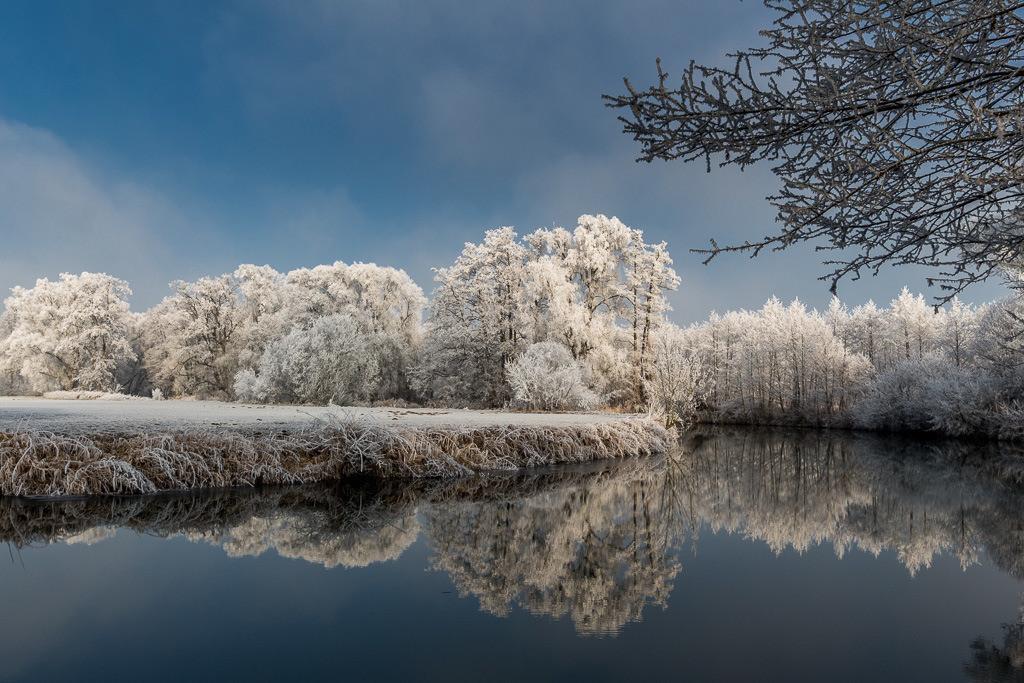 Sich spiegelnde Bäume im Bach