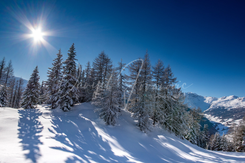 Winter | Winteridylle im Wipptal