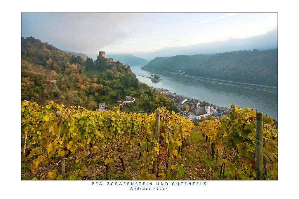Pfalzgrafenstein und Gutenfels | Die Serie 'Leuchtender Rhein' zeigt den Rhein in leuchtenden Farben.