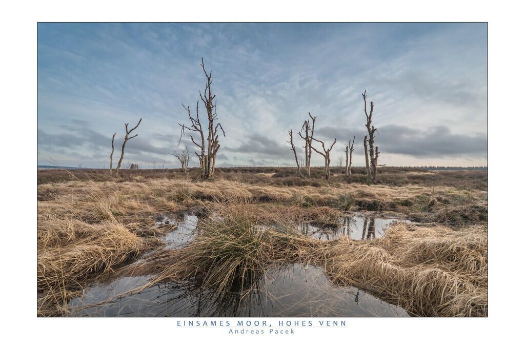 Einsames Moor, Hohes Venn | Die Serie 'Deutschlands Landschaften' zeigt die schönsten und wildesten deutschen Landschaften.