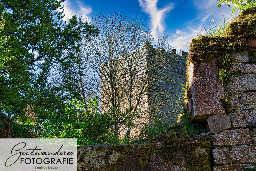 Burg Wildenberg - Ansicht Bergfried