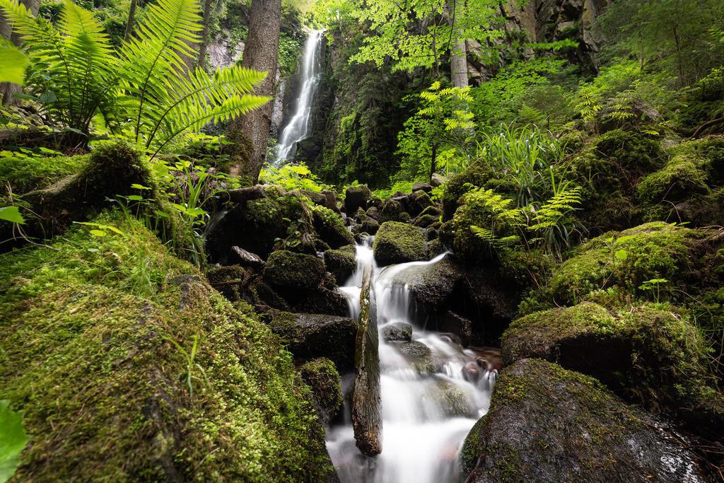 Burgbach Wasserfall 1