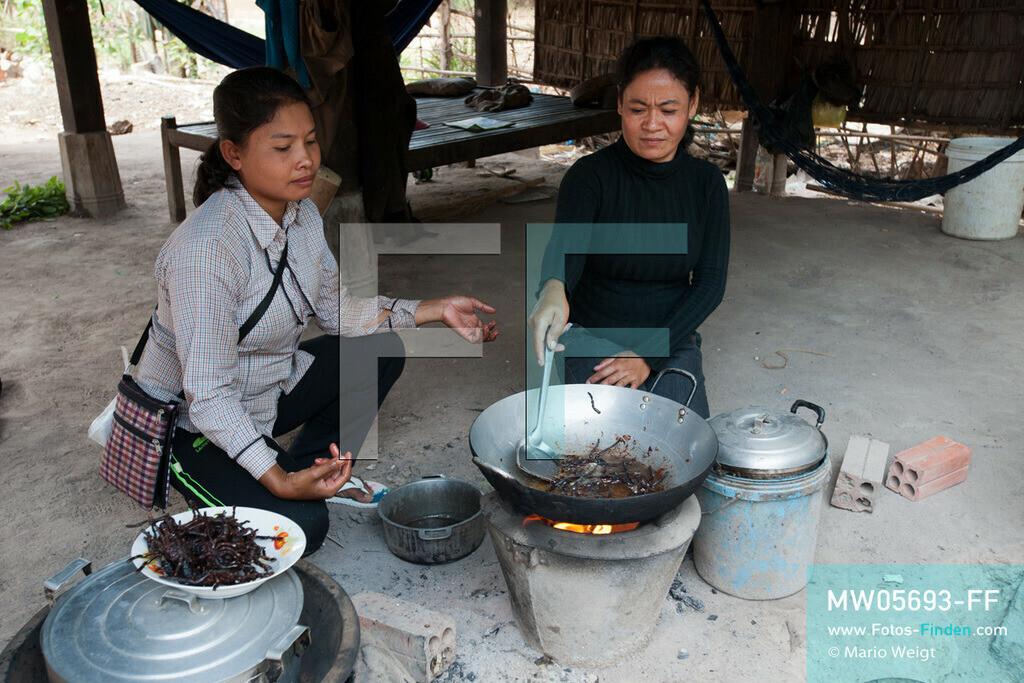 MW05693-FF | Kambodscha | Provinz Kampong Cham | Skoun | Reportage: Kambodschas achtbeiniger Snack | Shin und ihre Freundin brutzeln die Vogelspinnen im Wok.  In heißem Öl knusprig gebraten, mit Glutamat, Salz und Zucker vermischt und obendrein mit hauchdünnen Knoblauchscheiben verfeinert - so mögen die Kambodschaner ihre schwarzen Vogelspinnen.  ** Feindaten bitte anfragen bei Mario Weigt Photography, info@asia-stories.com **