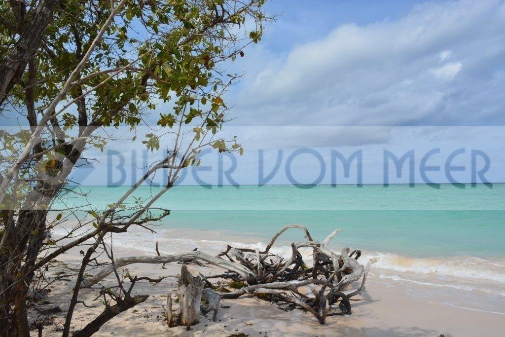 Strandbilder aus Kuba | Bilder vom Meer der Insel Cayo Jutías