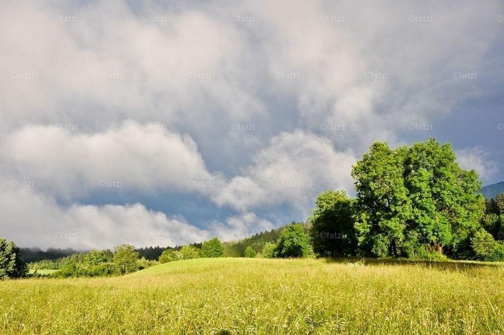 Dobr-Stef-Landsch-Regen12_025_1