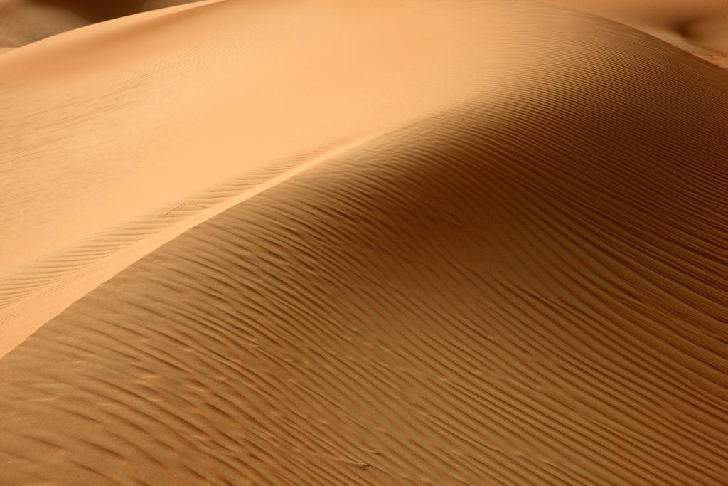 JT-110228-4151 | Roter Sand, Sandduenen, in der Empty Quarter genannten Wueste Rub'al-Khali, Emirate.