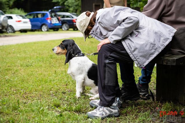 Ankoerung des SNLC 2021 | Lori von der Elbisfluh, Schnueriger Adolf, Ankoerung des SNLC 2021 in Lotzwil  04.07.2021 Foto: Leo Wyden