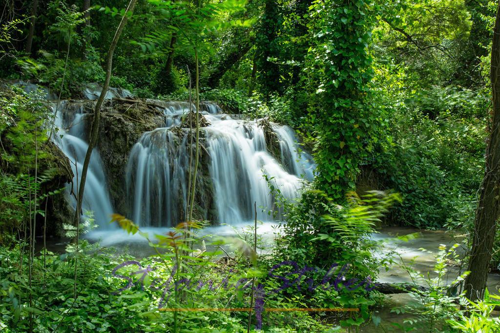 Wasserfall inmitten von Bäumen | Über mehrere Stufen fällt der Skradinski Buk in die Tiefe und schafft dadurch eine wunderbare Landschaft