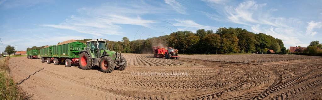 20110929-IMG_6100_pano | Ernte auf einem Kartoffelfeld - AGRARBILDER
