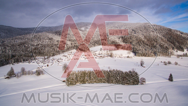 MAE-PIC-3