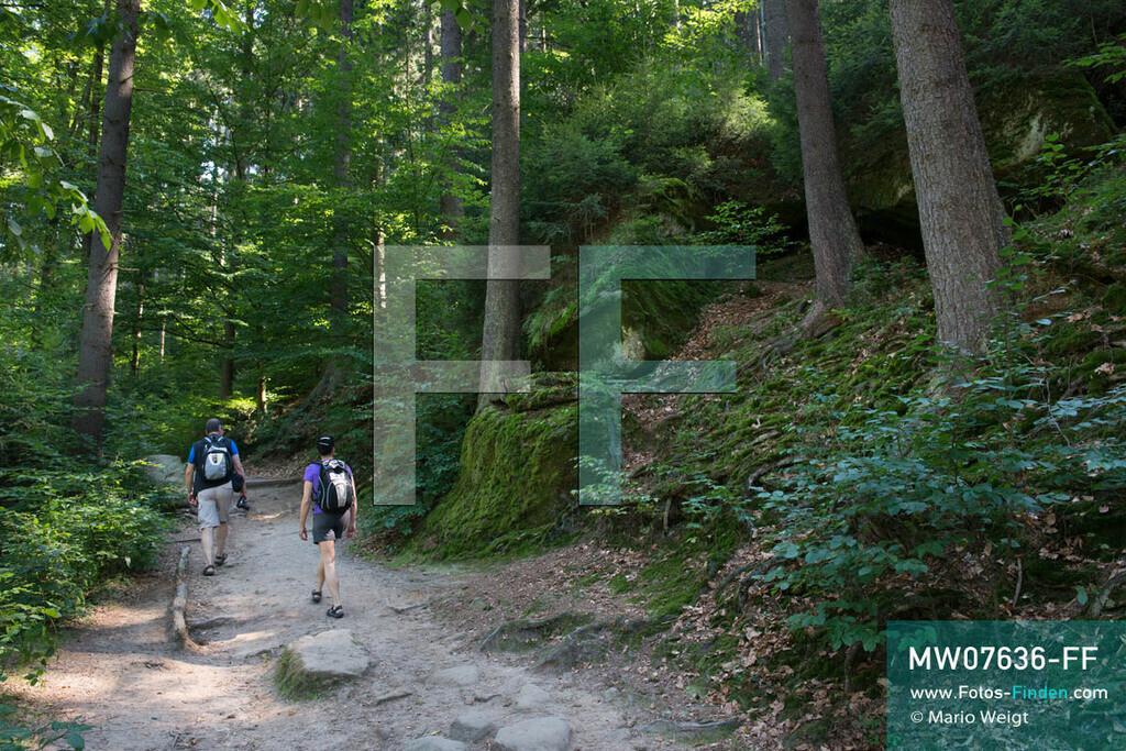MW07636-FF | Deutschland | Sachsen | Sächsische Schweiz | Wanderer auf dem Malerweg zum Kuhstall, dem zweitgrößten natürlichen Felsentor in der Sächsischen Schweiz. Der 112 km lange Hauptwanderweg schlängelt sich durch die wildromantische Landschaft des Elbsandsteingebirges, die seit 300 Jahren viele Künstler und Maler inspiriert hat.  ** Feindaten bitte anfragen bei Mario Weigt Photography, info@asia-stories.com **
