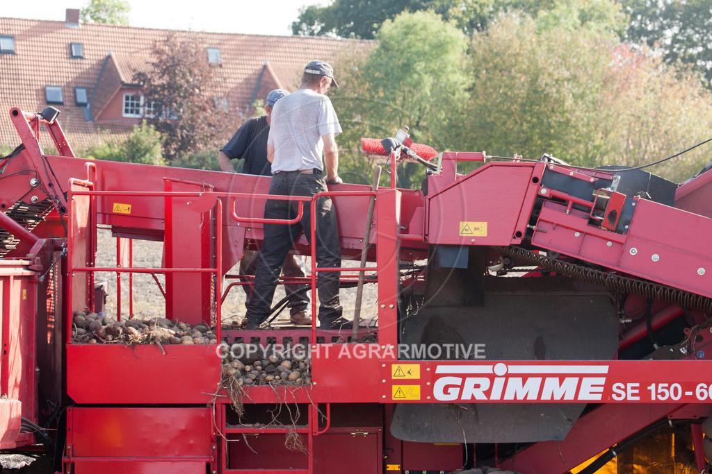 20110929-IMG_6053 | Ernte auf einem Kartoffelfeld - AGRARBILDER