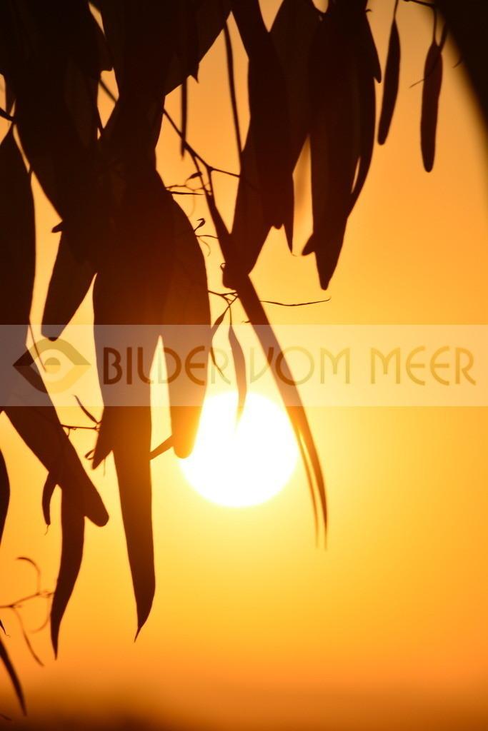 Bilder Sonnenuntergang | Fotos Sonnenuntergang