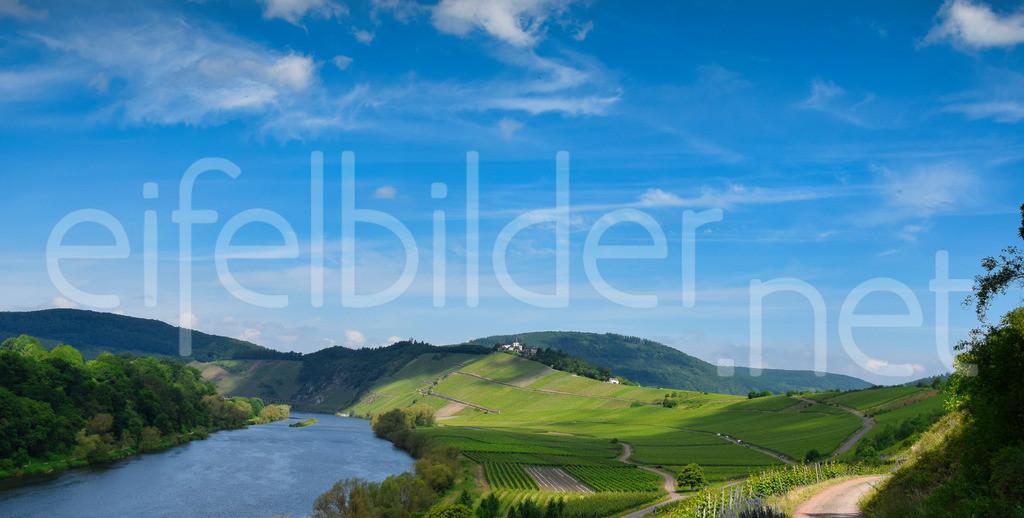 Mosel Landschaft Pünderich   Blick auf die Mosel und die Marienburg