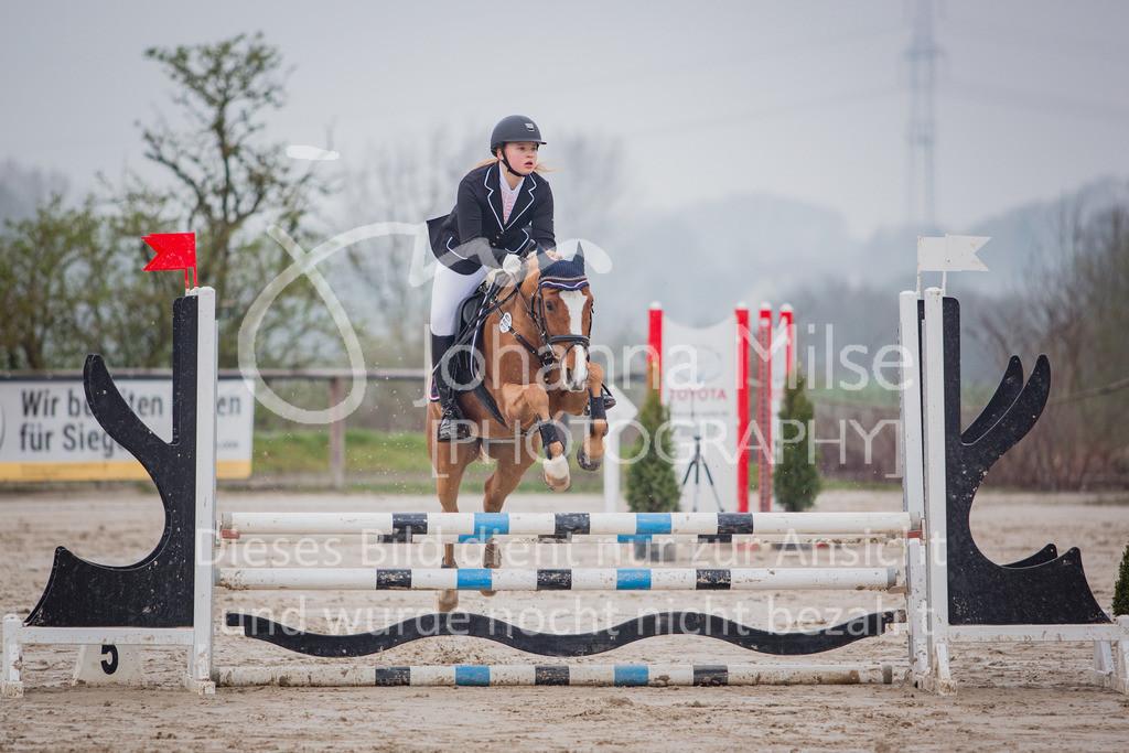 190406_Frühlingsfest_StilE-033 | Frühlingsfest der Pferde 2019, von Lützow Herford, Stil-WB mit erlaubter Zeit