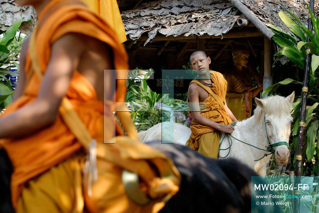 MW02094-FF | Thailand | Goldenes Dreieck | Reportage: Buddhas Ranch im Dschungel | Der junge Mönch Pansaen auf seinem Pferd Phet Thewada  ** Feindaten bitte anfragen bei Mario Weigt Photography, info@asia-stories.com **