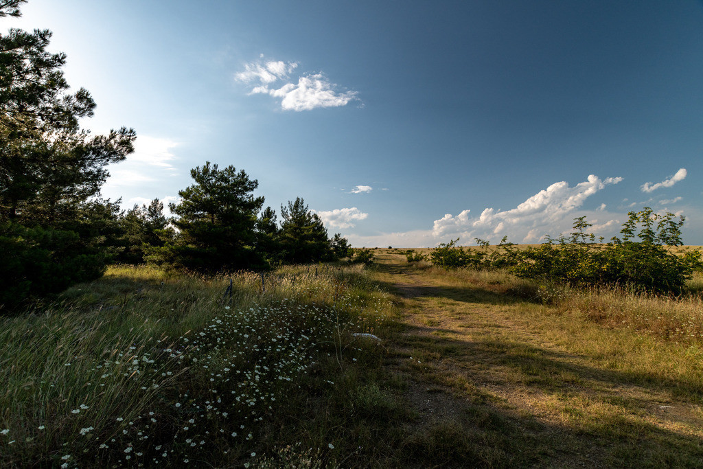 20190709-Greek landscape before sunset
