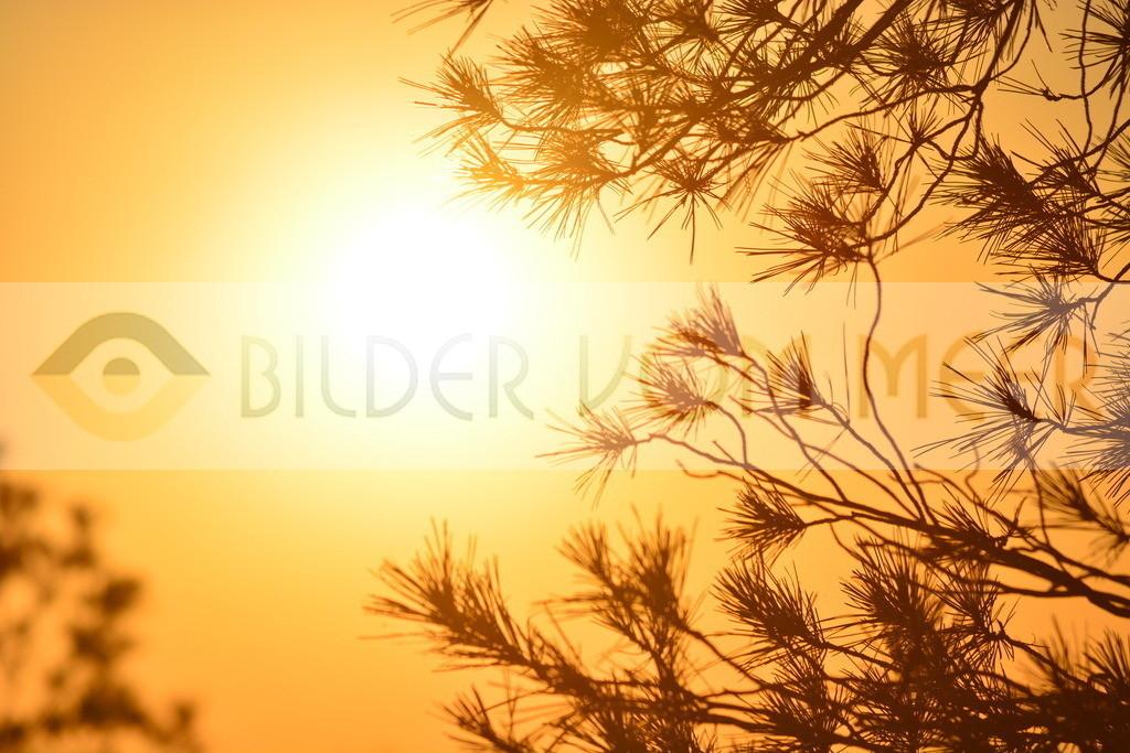 Bilder Sonne   Bilder Sonne Sonnenaufgang
