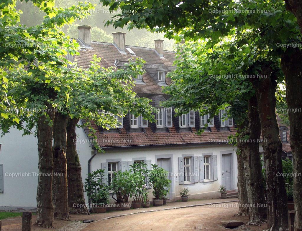 ALLEE | Staatspark Fürstenlager in Bensheim-Auerbach,