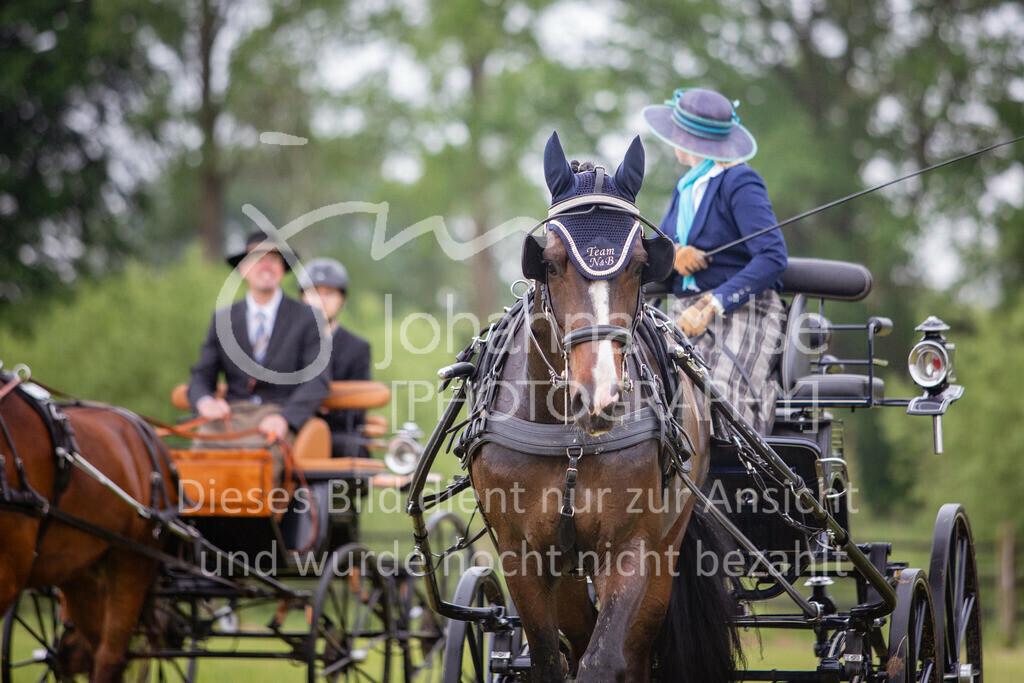 190525_Fahren-016 | Pferdesporttage Herford 2019 Fahren