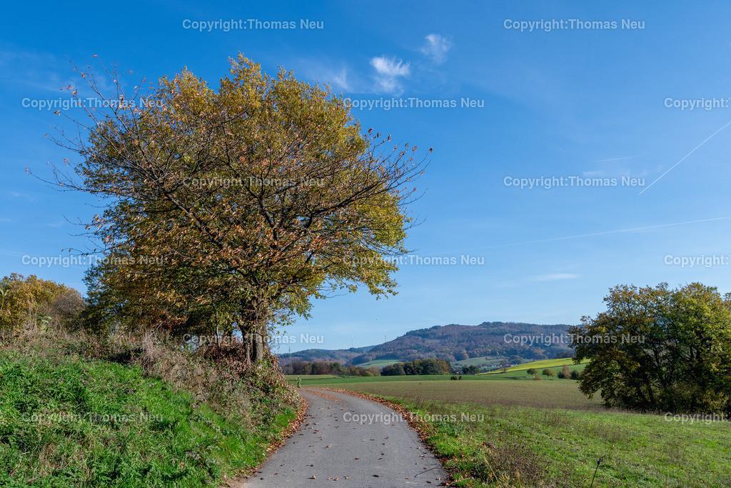 DSC_5130 | bre,bli,Adventsspaziergang , Schlierbacher Tal bis zum Kunstweg Lindenfels Fürth,, Bild: Thomas Neu