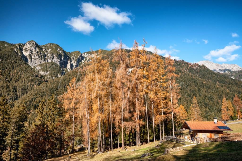 Zirler Mähder | Herbst im Karwendel