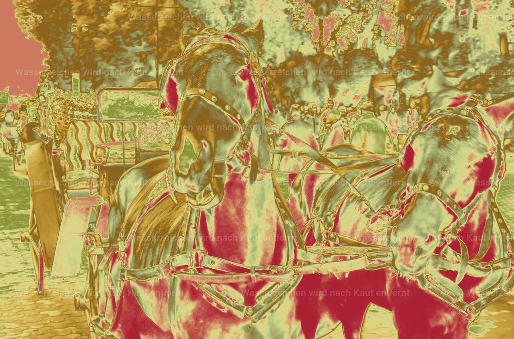 Horse Carriage   Coloriertes, Kunstwerk, Marokko, Marrakesch, Photokunst, Kunstwerk, Marrakech, Kunst, wallpaper, art