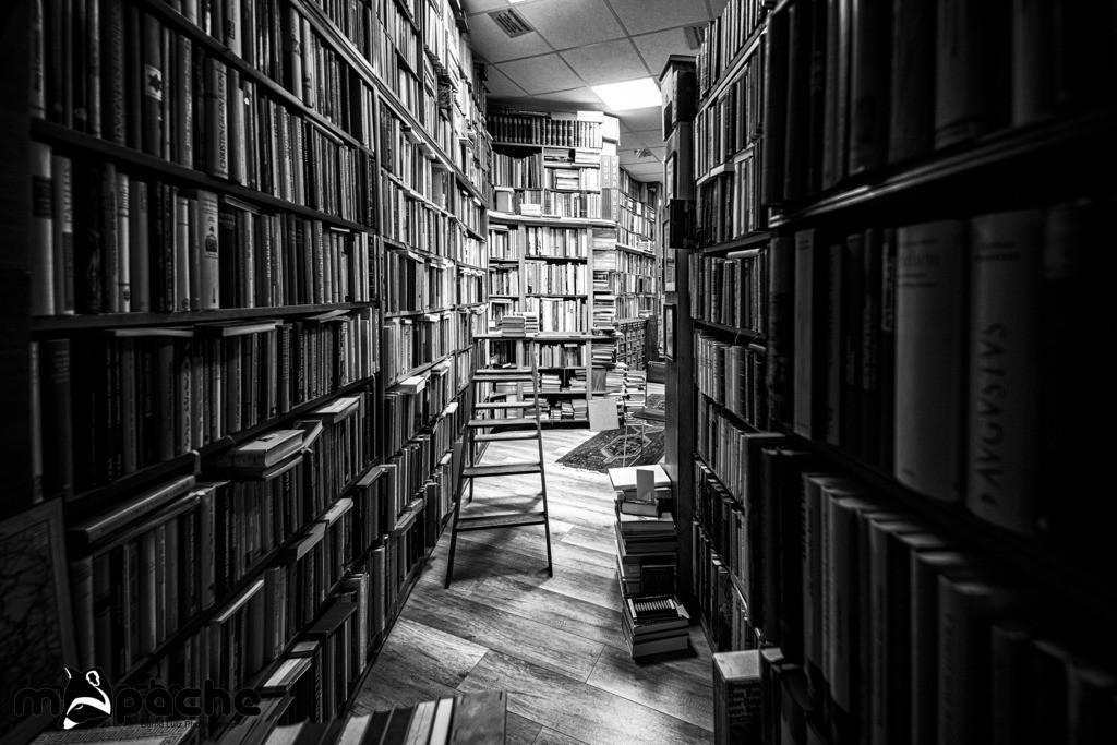 Die Buchhandlung