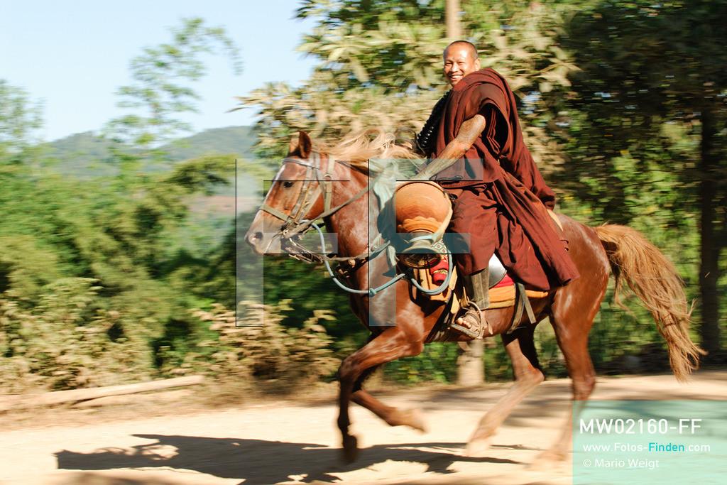MW02160-FF | Thailand | Goldenes Dreieck | Reportage: Buddhas Ranch im Dschungel | Abt Phra Khru Bah Nuachai Kosito auf seinem Pferd  ** Feindaten bitte anfragen bei Mario Weigt Photography, info@asia-stories.com **