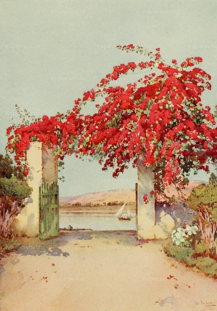 Cane_ Ella du (1874-1943) - Banks of the Nile 1913 - A garden in Luxor