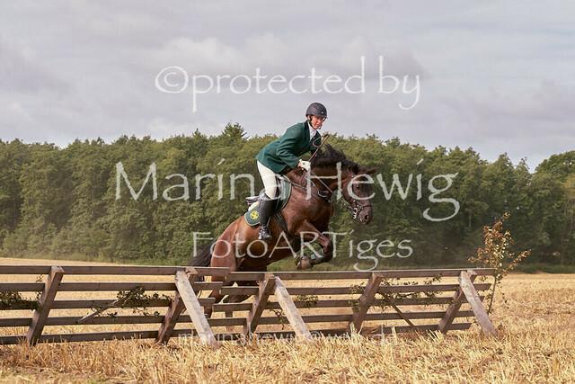 Jagd Knoop 216690_Marina Hewig
