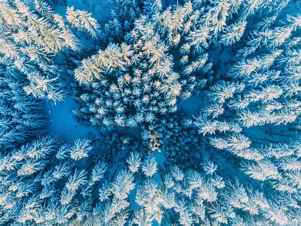 Schneezauber | Winterlandschaft im Schwarzwald von oben