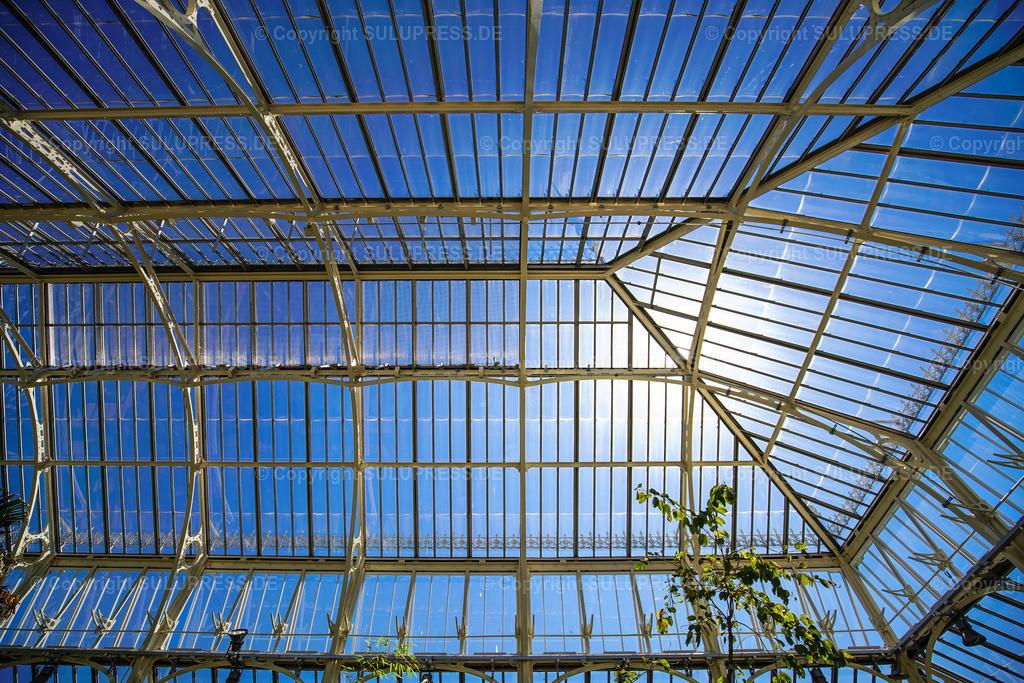 Temperate House - Royal Botanic Gardens Kew Gardens in London | 15.05.2018, die Royal Botanic Gardens, Kew (Kew Gardens) sind eine ausgedehnte Parkanlage mit bedeutenden Gewächshäusern. Sie liegen zwischen Richmond upon Thames und Kew im Südwesten Londons und zählen zu den ältesten botanischen Gärten der Welt. Innenansicht vom Temperate House (Haus der gemäßigten Klimazonen), mit 4880 m² etwa doppelt so groß wie das Palm House und damit das größte der Gewächshäuser in Kew, entstanden nach Plänen des englischen Architekten Decimus Burton (1859–63), erbaut vom Eisengießer Richard Turner.