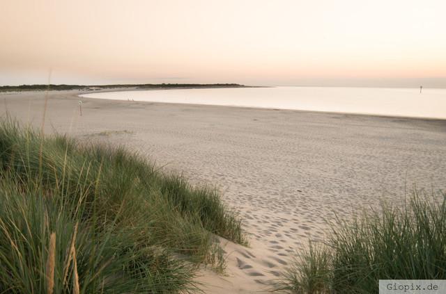 Bucht von Renesse | Sanddünen und Bucht in Renesse zum Sonnenuntergang