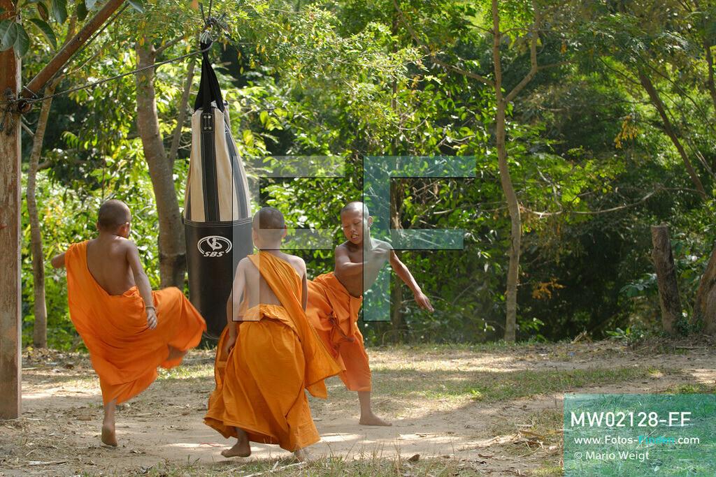 MW02128-FF | Thailand | Goldenes Dreieck | Reportage: Buddhas Ranch im Dschungel | Abt Phra Khru Bah Nuachai Kosito lernt den jungen Mönchen Muay Thai (Thaiboxen).  ** Feindaten bitte anfragen bei Mario Weigt Photography, info@asia-stories.com **