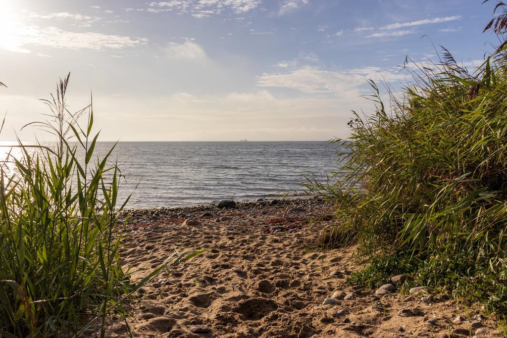 Strand in Hökholz | Weg an den Strand in Hökholz