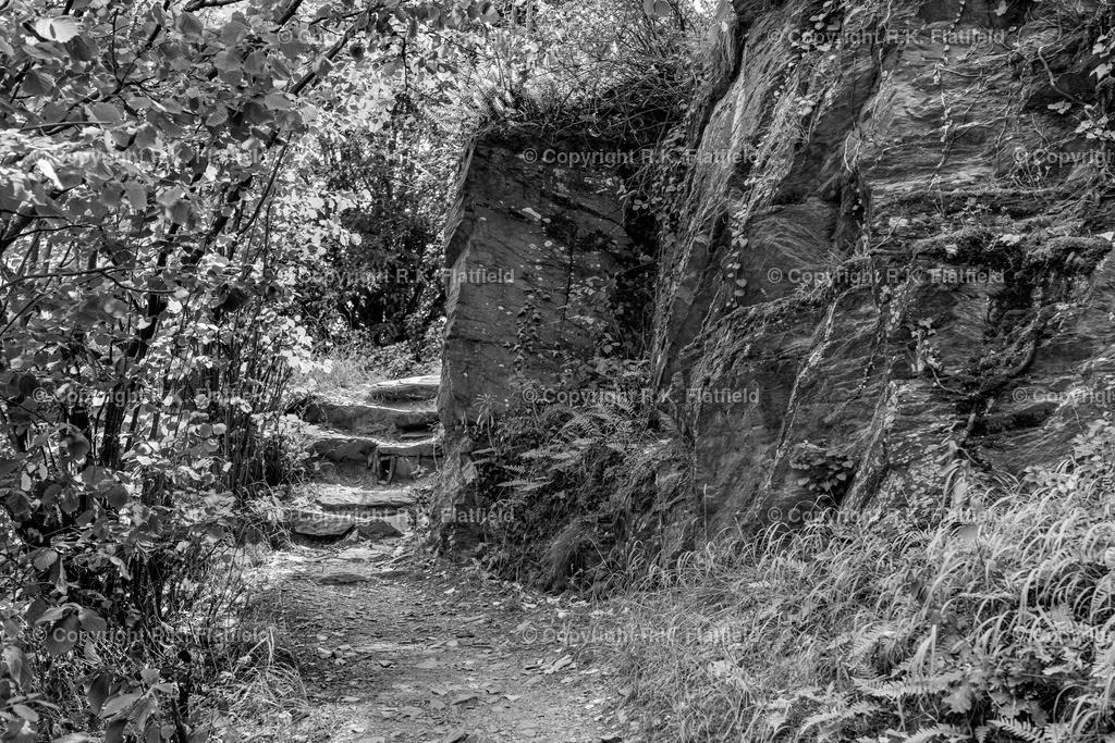 Weg im Fels | Rheinburgenweg