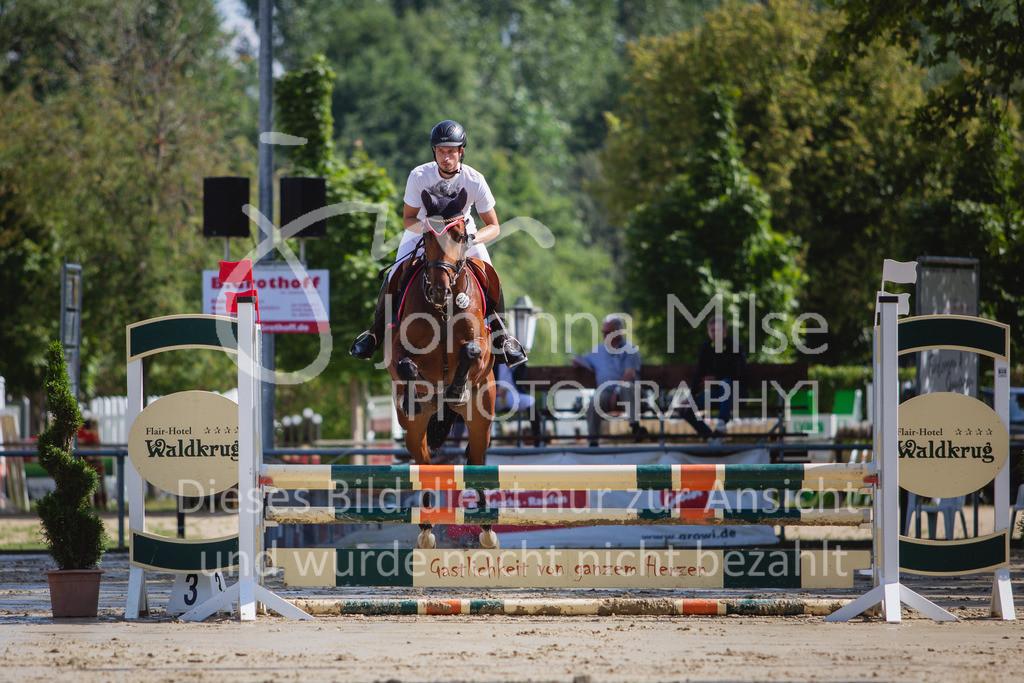 200819_Delbrück_Sprpf-A_1_2-026 | Delbrück Masters 2020 Springpferdeprüfung Kl. A* 4jährige Pferde