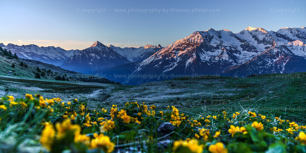 Lämmerbichl Blick in die Zillertaler Alpen