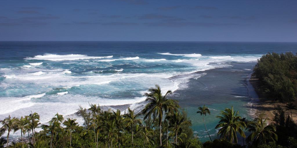 Hawaii RAW (900)-2